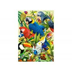 Castorland Puzzle Svet letcov, 1000 dielov