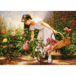 Castorland Puzzle V záhrade ruží, 1000 dielov