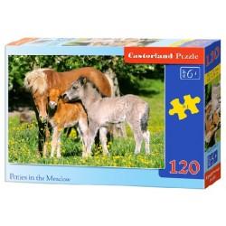 Castorland Puzzle Koníky na lúke, 120 dielikov