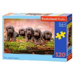 Castorland Puzzle Malé šteniatka, 120 dielikov