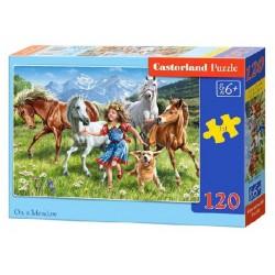 Castorland Puzzle Na lúke, 120 dielikov