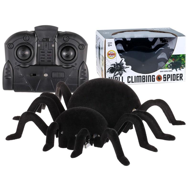 Pavúk na diaľkové – chodí po stene