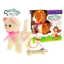 Chodiaca mačka, 2 farby