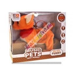 Veľký chodiaci psík s hudbou