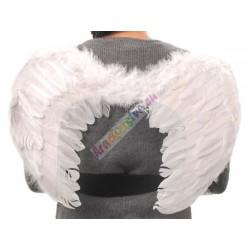 Anjelské krídla  -  z pierok