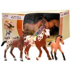 Kone - ručne maľované