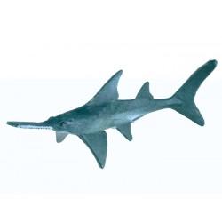 Sada zvierat - Žraloky