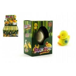 Liahnuce vajce - kačička