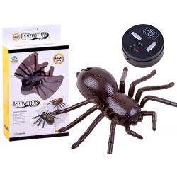 Pavúk Vtáčkar na diaľkové ovládanie