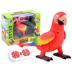 Papagáj na diaľkové ovládanie