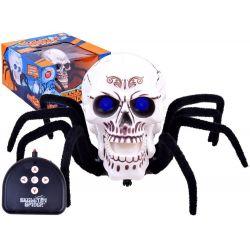 Strašidelný pavúk - lebka