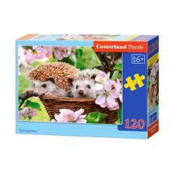 Castorland Puzzle Závan jari, 120 dielikov