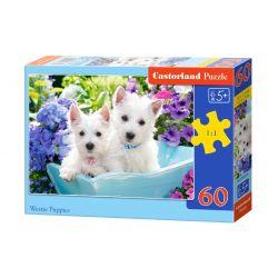 Castorland Puzzle Biele šteniatka, 60 dielikov
