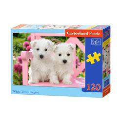 Castorland Puzzle Biele šteniatka, 120 dielikov