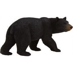 ANIMAL PLANET – Medveď baribal
