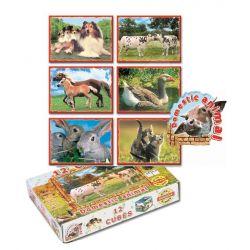 Kocky s obrázkami 6v1, domáce zvieratá