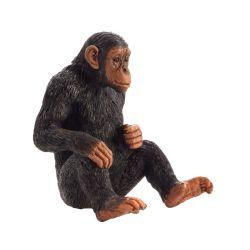 Animal Planet - Šimpanz